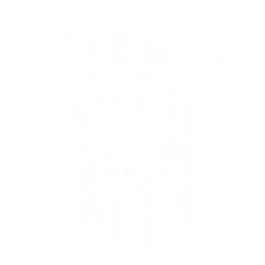 Buddies Without Organs